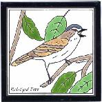 Red-Eyed Vireo Tile,Red-Eyed Vireo Wall Plaque,Red-Eyed Vireo Trivet